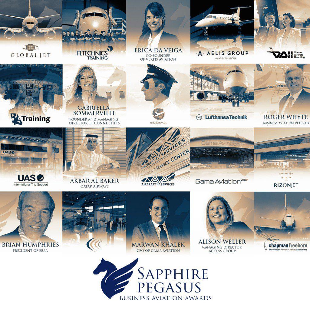 Sapphire Pegaus_2016_Image Nominees (1)